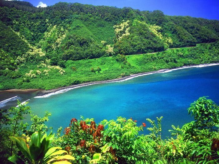 Hawaii Kapolei1 Printing Service